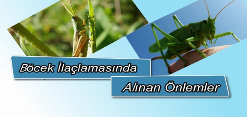 Böcek İlaçlamasında Alınan Önlemler