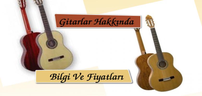 Gitarlar Hakkında Bilgi Ve Fiyatları