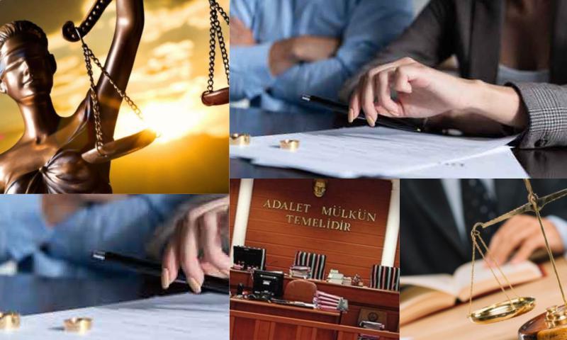İdare Hukukunun Doğuşu